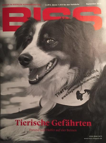 Tierische Gefährten, oder – Wie die Sozialarbeit auf den Hund kam!